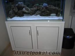 Beylikdüzünde deniz akvaryumu