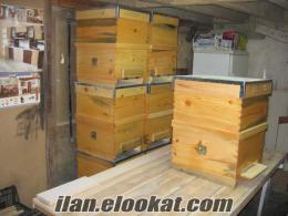 İmalattan satılık arı kovanı