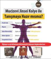 MUCİZEVİ JİNSEİ GÜMÜŞ KOLYE 200 TL. YERİNE, 169 TL.