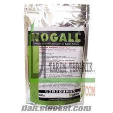 Nogall
