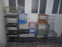 muhabbet, kanarya, keklik, güvercin, bıldırcın ve tavşan kafesleri toptan yapılı