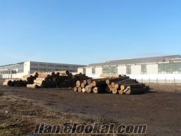 romanyada fabrika satılık