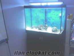 çok ucuz acil satılık deniz akvaryumu