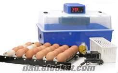 satılık cimuka kuluçka makinası