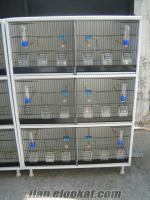 katlı kanarya üretim kafesleri