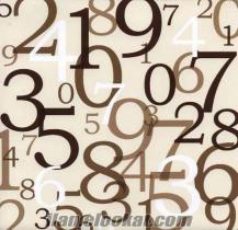 göktürkte ortaokul ve lise matematik dersi verilir.
