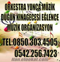 AYDINDA DÜĞÜN KINAGECESİ ORKESTRA ORGANİZASYONLARI