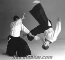 Aikido ve Taekwondo özel ders.