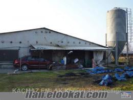 Al değerlendir kazan satılık tavuk çiftliği