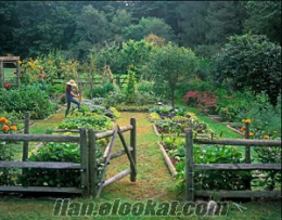 1000 m2 hobi bahçesi, Ankara merkeze 46 km