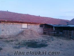 Bolvadinde çok acele satılık besi çiftliği