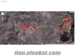 AYDIN/KÖŞK/KOÇAK MAHALLESİ / GAYRİMENKUL / 170.500M2 17.5 DÖNÜM