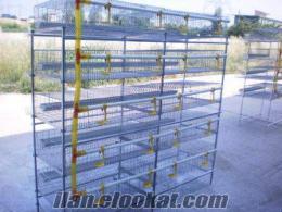 bıldırcın kafesi çok katlı ucuz 1o adetli kafesimiz 350-400 kuşlu