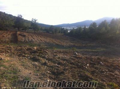 çamönü mendereste satılık 47 dönüm arazi