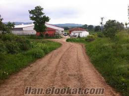 izmitte satılık acil yatırımlık kelepir süt ve besi çiftliği