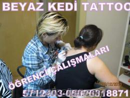 İstanbul sertifikalı dövme kursu verenler beyaz kedi tattoo