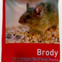 Brody (Pasta Formunda Fare İlacı)