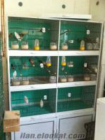 adanadan satılık pvc üretim kafesi 1 sınıf