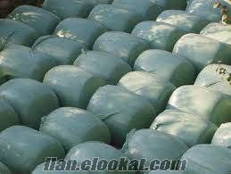Yonca Balyası ve Paketleme, Normal Mısır Silajı