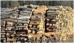 fırınlık meşe odunu satılık