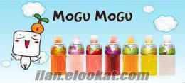 İstanbul.Toptan Tropikal meyve suyu Mogu Mogu