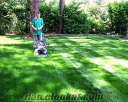 Bahçe bakımı, Çim, Gübre, İthal gübre, Fidan, bakım, onarım, Bahçevan,