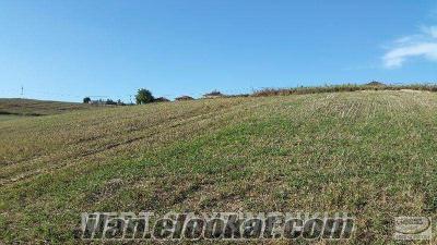 kandırada sarıcaali köyün de yola 1 parsel yatırımlık arazi-