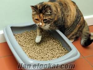 10 KG kedi kumu çam talaşı pelet