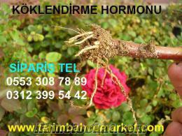 Köklendirme hormonu, köklendirme-hormonu, çelik köklendirme hormonu, dal köklend