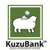 Hayvancılıkta Çığır Açan Proje: KuzuBank™