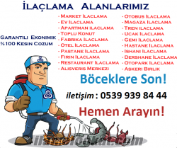 İstanbul ilaçlama, İstanbul böcek ilaçlama, ilaçlama şirketleri
