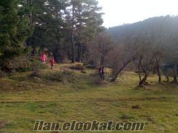 çanakkale biga köy içi 10.000 peşin 10 taksit