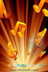düğün kına nişan sünnet evlilik teklifi gelin çıkarmaya müzisyen