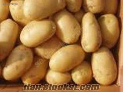 Bitlis ahlat patatesi