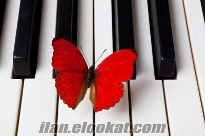 artık Fazla Ödemeye SON piyanist ve dj müzik paketi fırsat indirimi
