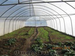 çatalca hallaçlıda satılık arazi/çiftlik