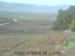 Kestel Kayacık Nüshetiye bölgesinde Hesaplı Ucuz tarla