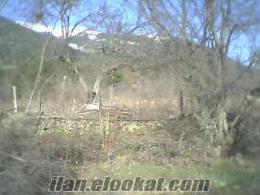 Uludağ Yolunda Soğukpınarda hesaplı düz bahçe acil kelepir