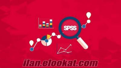 Spss Analiz Raporlama -Proje- İstatistik Matematik İngilizce Çeviri ve Ödevleri