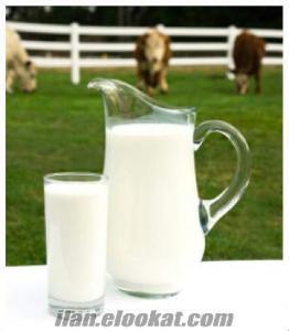Kendi Çiftliğimizden toptan günlük köy sütü