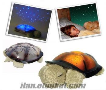 TOPTAN 4 Işıklı ve Müzikli Kaplumbağa Gece Lambası