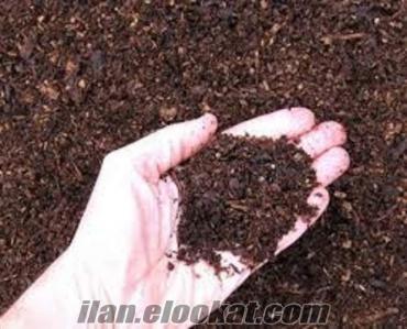 bahçe toprağı, kilit taşı, taş döşeme, beton saksı