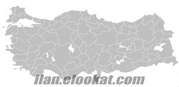 ITGS Casus Böcek Gizli Kamera Tespit Hizmeti İstanbul Ankara İzmir Adana Bursa
