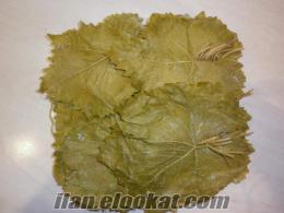 tokat erbaanın meşhur taze salamura (haşlanmış) sarma yaprağı (tevek yaprağı) meşhur