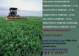 Gea yonca tohumu, yonca tohumu, yonca tohumu fiyatları, yonca tohumu satışı