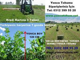 YONCA TOHUMU, yonca tohumu 15 TL, Yonca Balyası, Yonca tohum fiyat, yonca tohum
