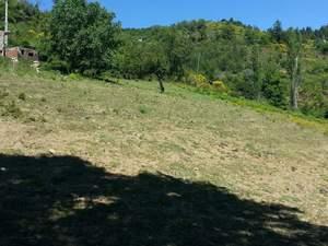 Sinop ayancık dolay köy 39 parsel de tarla