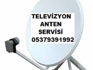 PALMİYE EVLERİ  uydu servisi