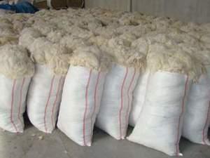 fabrikadan toptan yıkanmış yün, yapağı yünü, koyun yünü, temiz yün, taranmış