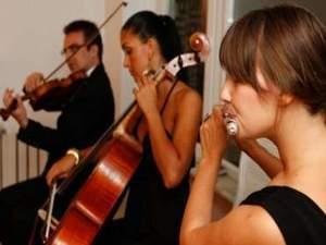 avm etkinliklere üzisyen trio dj çello bando kemençe piyanist fasıl kiralama ist